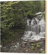 Wagner Falls Forest Wood Print