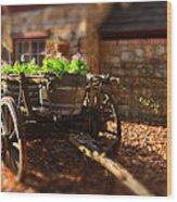Wagon Of Flowers Wood Print by Andrew Dickman