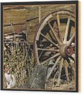 Wagon Wheel Cat Wood Print
