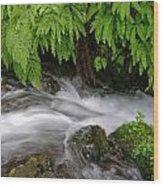 Wahkeena Falls One Wood Print