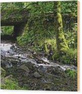 Wahkeena Falls Three Wood Print