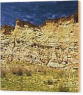 Wahweap Cliff Wood Print