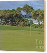 Wailua Golf Course - Hole 17 - 3 Wood Print