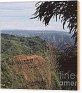 Waimea Canyon And Marshes Wood Print