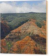 Waimea Canyons Wood Print