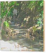 Waimea Falls Park Wood Print