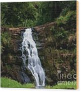 Waimea Valley Falls Wood Print