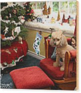 Waiting For Santa Wood Print