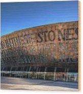 Wales Millenium Centre 3 Wood Print