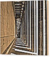 Walhalla Colonnade ... Wood Print