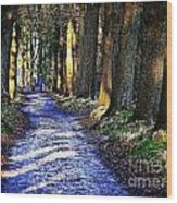 Walk On A Cold Autumn Day Wood Print
