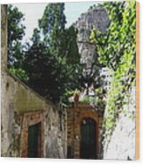 Walking Along The Amalfi Coast  5 Wood Print