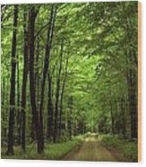 Walking Away Forest Path  Wood Print