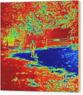Walking The Dog On A Hot Day Wood Print
