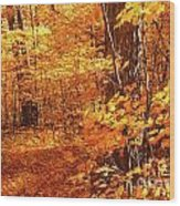 Walking Through The Maple Trees  Wood Print