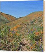 Walking Thru The Wildflowers Wood Print