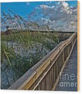 Walkway To The Beach Wood Print