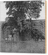 Wall Tree Wood Print