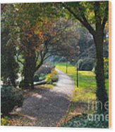 Wallanlagen Park Wood Print