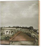 Walls Of Dubrovnik Wood Print