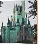 Walt Disney Castle Wood Print