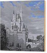 Walt Disney World - Cinderella Castle Wood Print