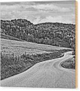 Wandering In West Virginia Monochrome Wood Print