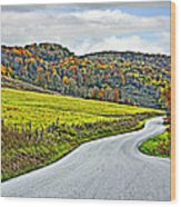 Wandering In West Virginia Wood Print