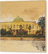 War In Iraq Sadaam's Palace Wood Print by Jeff Steed