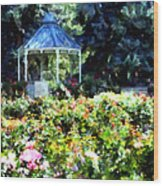 War Memorial Rose Garden 1  Wood Print