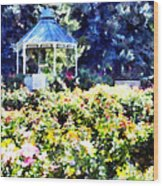 War Memorial Rose Garden  3 Wood Print