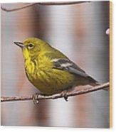 Warbler - Pine Warbler - Oh So Yellow Wood Print