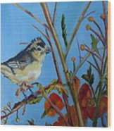 Warbling Verio Wood Print