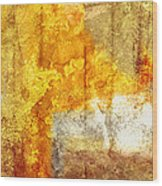 Warm Abstract Wood Print