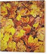 Warm Leaves 5879  Wood Print