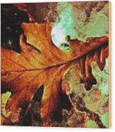 Warm Oak Wood Print