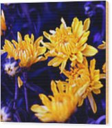 Warm Yellow In A Sea Of Blue Wood Print