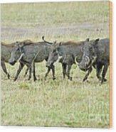Warthogs In Masai Wood Print