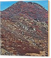 Wasatch Mountains In Ogden Utah Wood Print