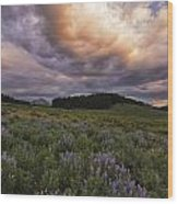 Washington Gulch Flowers Wood Print