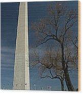 Washington Monument's World Famous Kite Eating Tree Wood Print