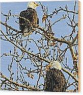 Watchers Wood Print