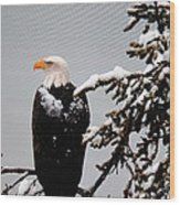 Watching Over The U.s.a. Wood Print