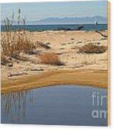 Water By The Ocean Wood Print