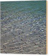 Water Depths Marine Wood Print