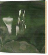 Water Drop Abstract Green 27 Wood Print