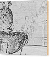 Water Fountain 1 Wood Print