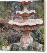 Water Fountain In  The Forest Wood Print