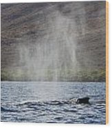 Water From A Whale Blowhole II Wood Print