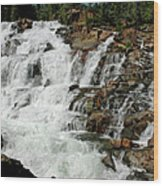 Water In Motion Glen Alpine Falls Wood Print